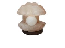 Magia del sale Torino | Lampada Conchiglia